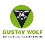 قیمت موتور آسانسور - گستاوولف